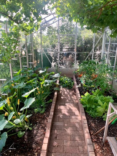 Lizette Baker's Greenhouse